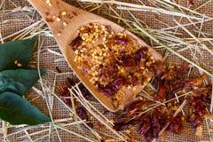Poivron rouge de /poivron Image stock