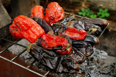 Poivron rouge et aubergines Photos libres de droits