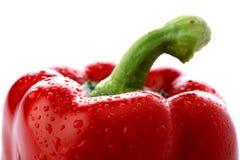Poivron rouge frais Photo libre de droits