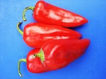 Poivron rouge sur le fond bleu Photo libre de droits