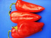 Poivron rouge sur le fond bleu Photos stock