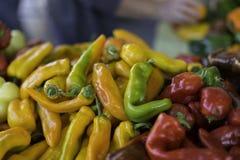 Poivrons au marché d'agriculteurs Photo libre de droits