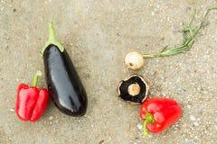 Poivrons, aubergine, champignons, oignon Images stock