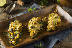 Poivrons bourrés par quinoa rôtis faits maison de Poblano Images libres de droits