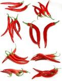 poivrons chauds de /poivron rouges Images libres de droits