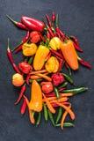 Poivrons colorés mélangés sur l'ardoise noire Photographie stock libre de droits