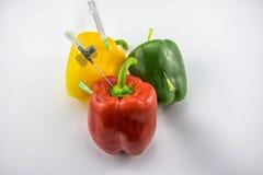 Poivrons de GMO Photos stock