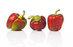 Poivrons de légumes sur le fond blanc image libre de droits