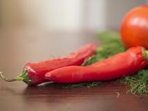 Poivrons de piment, aneth, persil, tomate Photos libres de droits