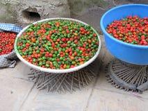 Poivrons de piment colorés de Nepali Photo stock