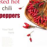 Poivrons de piment d'un rouge ardent au-dessus de blanc Images stock