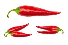 Poivrons de piment d'un rouge ardent avec le chemin de coupure Photographie stock