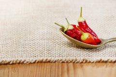 Poivrons de piment d'un rouge ardent dans une cuillère Images libres de droits