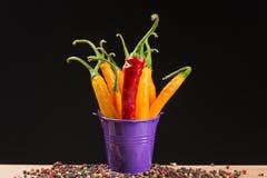 Poivrons de piment jaune et rouge dans un seau coloré Photographie stock