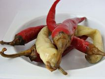 Poivrons de piment marinés roumains photos stock
