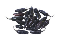 Poivrons de piment noirs Image stock