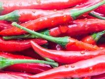 Poivrons de piment rouge photo stock