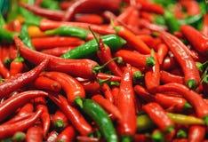 Poivrons de piment rouges et verts au fond Image libre de droits