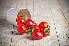 Poivrons de piments d'un rouge ardent dans peu de seau Images libres de droits