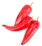 Poivrons de piments rouges Image stock