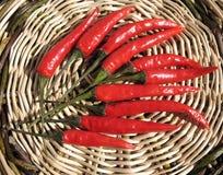 Poivrons de /poivron rouge Photographie stock