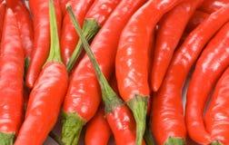 Poivrons de /poivron rouge photos libres de droits