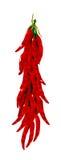 Poivrons de /poivron rouge Photo libre de droits