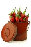 Poivrons de /poivron rouge frais Images stock