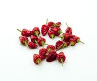 Poivrons de s/poivron d'un rouge ardent Photographie stock