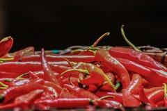Poivrons de s/poivron rouges Image libre de droits