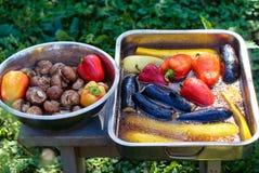 Poivrons et aubergines de champignon de paris de légumes frais en marinade pour griller dans les plats profonds Images libres de droits