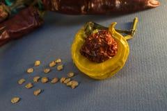 Poivrons jaunes et d'un rouge ardent secs avec la graine Photo libre de droits