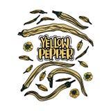 Poivrons jaunes tirés par la main illustration de vecteur