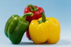 Poivrons multicolores (légumes) sur un fond bleu Photo libre de droits