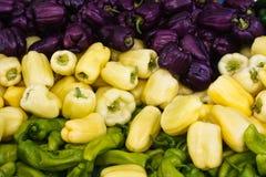 Poivrons, rouge, jaune, orange, verte Photos libres de droits