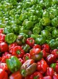 Poivrons rouges et verts Photo libre de droits