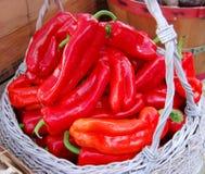 Poivrons rouges frais de ferme Photo libre de droits