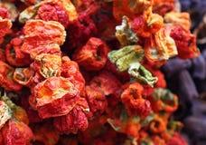 Poivrons rouges secs d'Istanbul Photo stock