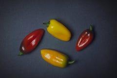 Poivrons végétaux jaunes et rouges sur le fond foncé Image libre de droits