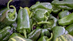 Poivrons verts à vendre à un marché Photographie stock