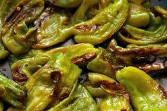 Poivrons verts cuits Photographie stock