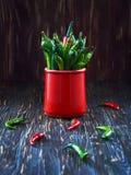 Poivrons verts dans une tasse rouge sur une table en bois images libres de droits