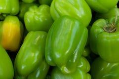 Poivrons verts ou paprikas Photo libre de droits