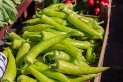 Poivrons verts végétaux Images stock
