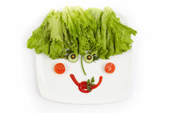 pojęcia żywienioniowego jedzenia zdrowy talerz Obrazy Royalty Free