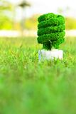 pojęcia eco energia Fotografia Stock