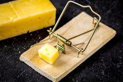 Pojęcia jedzenie dla ślepuszonek w mousetrap drewnianego tła odgórnym widoku Zdjęcie Stock