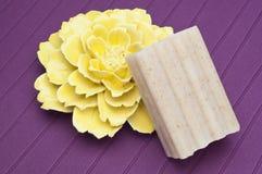 pojęcia kwiatu mydła zdrój Fotografia Royalty Free