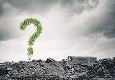 pojęcia o nzp często odizolowany pytanie spory white Zdjęcie Stock