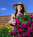 pojęcia ogrodnictwo Obraz Royalty Free